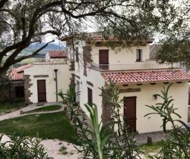 Artemisia Sardegna