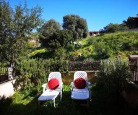 Sunny garden house