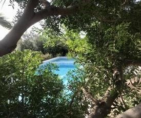 villa Orchidee Sardegna