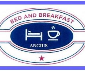 B&B ANGIUS