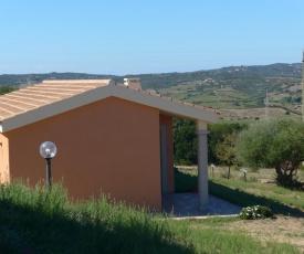 agriturismo gli olivastri - casa ginestre