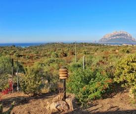 Casa Vacanze - Via Monte Nieddu, 22