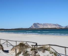 Arancio Splendida villa singola a 20 metri dalla Cinta una delle spiagge piu belle della Sardegna