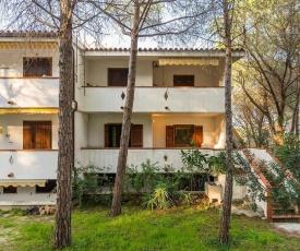Apartments in Sas Linnas Siccas 33561